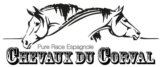 Chevaux du Corval, Elevage de Chevaux de Pure Race Espagnole