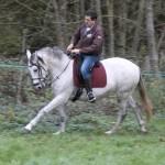 Jument Pure Race Espagnole - Elevage de chevaux de Pure Race Espagnol - Yonne - Joigny - Remona Gom