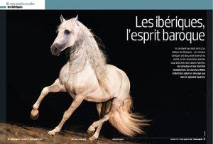 Les chevaux ibériques à l'honneur dans Cheval Magazine Hors Série